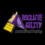AbsoluteAgility